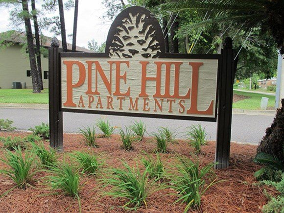 Pine Hill Photo Gallery 3